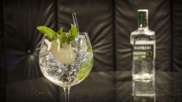 Připravte si perfektní Gin & Tonic